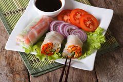 Vegetable spring rolls with sauce horizontal top view Royalty Free Stock Photo