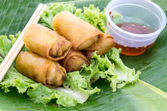 Vegetable Spring Rolls,snack Royalty Free Stock Images