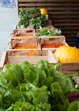Vegetable stall Royalty Free Stock Image