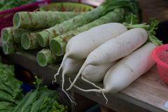 Vegetable stalls. Sell radish and Lettuce. At the farmer`s market Stock Images