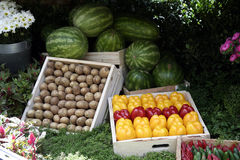 Vegetable Stand. Close up of a fresh vegetable produce stand in an open air farmers market showing a variety of vegetables Royalty Free Stock Photo