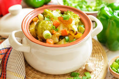 Vegetable stew. Fresh homemade vegetable stew in the pot Royalty Free Stock Image