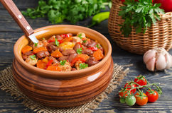 Vegetable stew with chicken and beans Royalty Free Stock Photo