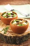 Vegetable stew with mushrooms Royalty Free Stock Photos