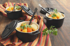 Vegetable stew with pumpkin Royalty Free Stock Photography