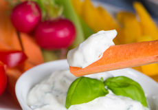 Vegetable sticks with herb and tomato dip Stock Photography