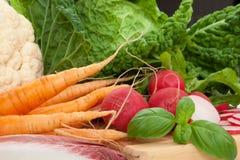 Vegetable still-life. Fresh organic vegetable carrots radish and salad stock image