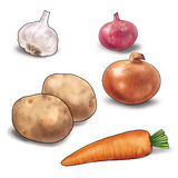 Vegetable on white. Vegetables Still Life. The carrot, garlic, onion, onion red, potatoes on a white background. High resolution of the picture digital stock illustration