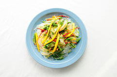Vegetable stir fry with sliced mango over glass noodles Stock Images