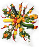Vegetable Sun Royalty Free Stock Photos