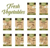 Vegetable tag and farm market veggies price labels. Set. Fresh tomato, carrot, bell pepper and cabbage, broccoli, eggplant, cucumber and pea, pumpkin and beet Royalty Free Stock Images