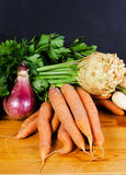 Vegetable Royalty Free Stock Photo
