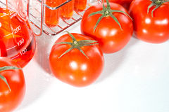 Vegetable test, Genetic Modification, tomato. Vegetable test, tomato, Genetic Modification, Scientific Experiment stock photography