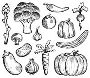 Vegetable theme collection 2 Stock Photos
