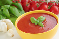 Vegetable tomato soup and ingredients for cooking - tomatoes, garlic and basil herbs. Close up view. Vegetable tomato soup with basil herb. Ingredients for Stock Image