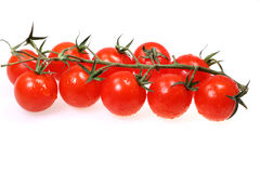 Vegetable tomatoes with water drops Royalty Free Stock Images
