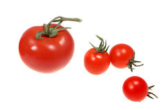 Vegetable tomatoes on white background Stock Photography