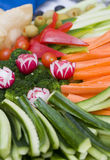 Vegetable Tray stock image