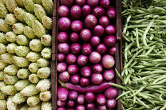 Vegetable triptych Royalty Free Stock Photography