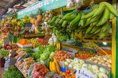 Vegetable and tropical fruit stand at Medellin colombia retail m. Vegetable and tropical fruit stand at Medellin  retail market in the morning Colombia Stock Image