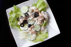 Vegetable tuna salad with isolated background Royalty Free Stock Photo