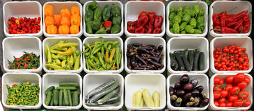 Vegetable variety Stock Photography