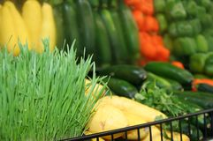 Vegetable variety. A variety of vegetables at a grocery store, shallow depth of field Stock Photography