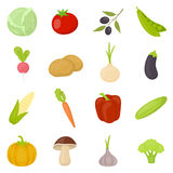 Vegetable 16 vector icons set in cartoon style. Vegetable 16 vector icon set in cartoon style for web design Stock Image