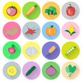 Vegetable vector set. Colorful vegetables vector collection set Stock Images