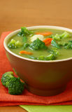 Vegetable Vegetarian Soup Royalty Free Stock Photo