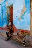 Vegetable Vendor, Trinidad, Cuba Stock Images