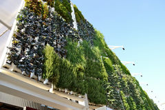 Vegetable vertical gardens of the USA pavilion in Milan. Stock Image