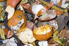 Vegetable waste Royalty Free Stock Images