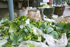 Vegetable waste dump Royalty Free Stock Photography