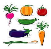 Vegetable on white background Royalty Free Stock Image