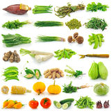 Vegetable on white background Stock Photos