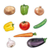 Vegetable on white background. Mixed vegetable isolated on white background. Fresh potato, pepper red and yellow pepper and red tomato, onion, cucumber, carrot vector illustration