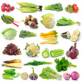 Vegetable on white background Stock Photo