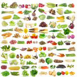 Vegetable on white background. Set of vegetable on white background Stock Photos