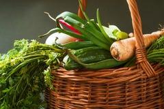 Vegetable in wicker basket Stock Photos