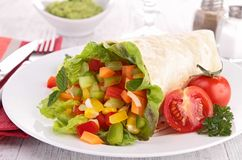 Vegetable wrap. Close up on vegetable wrap Royalty Free Stock Photo