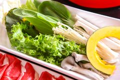 Vegetable wrap in dish royalty free stock photography