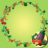 Vegetable wreath Royalty Free Stock Photos