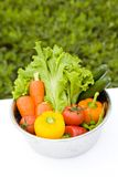 Vegetables Stock Photo