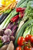 Vegetables. Arrangement of different kinds of vegetables Royalty Free Stock Photography