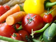 Vegetables. A basket full different vegetables Stock Image