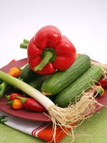 Vegetables. Some fresh cucumbers, chili and onions on a plate Royalty Free Stock Photos