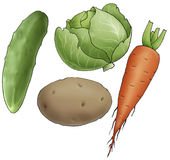 Vegetables. Four vegetables on a white background Stock Photo