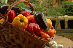 Vegetables. On a table in a garden Royalty Free Stock Photography