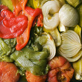 Vegetables. Cooked vegetables of various colours Royalty Free Stock Images
